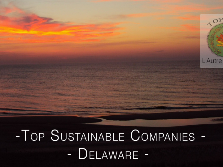 Top Sustainable Companies in Delaware