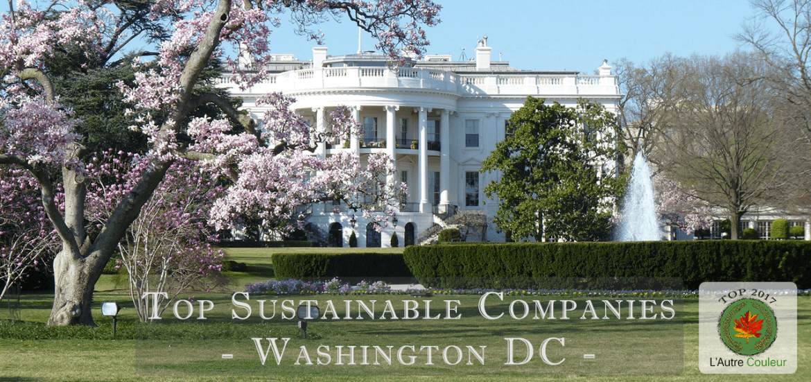 top sustainable companies in Washington DC