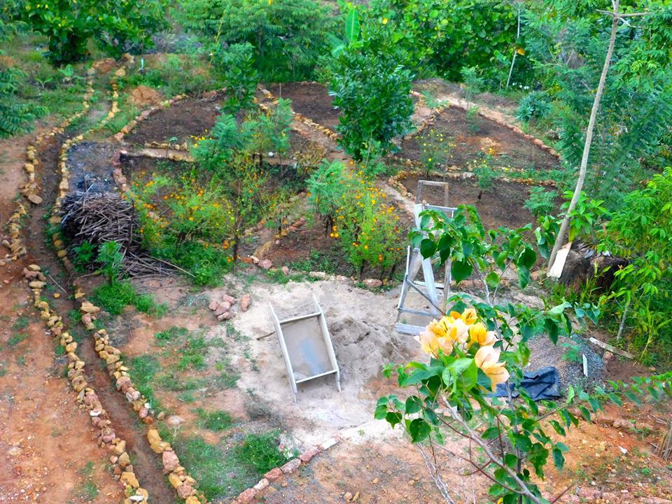 Amuura Permaculture Garden