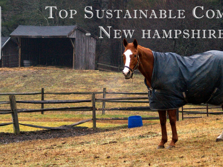 Top Sustainable Companies in New Hampshire