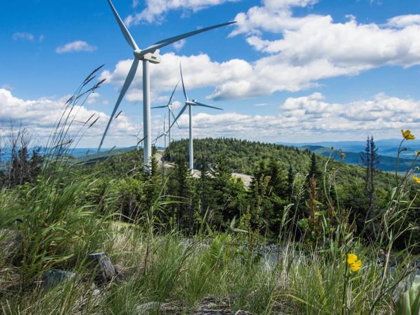 L'Autre Couleur Top Sustainable companies in Vermont