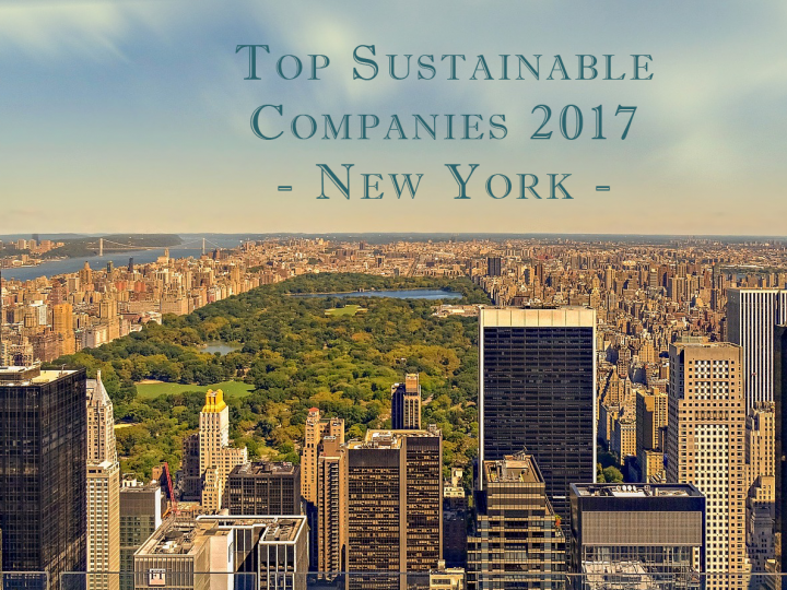 Top Sustainable Companies in New York