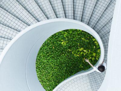 Qu'est-ce qui pousse les entreprises responsables à choisir le markéting écologique ?