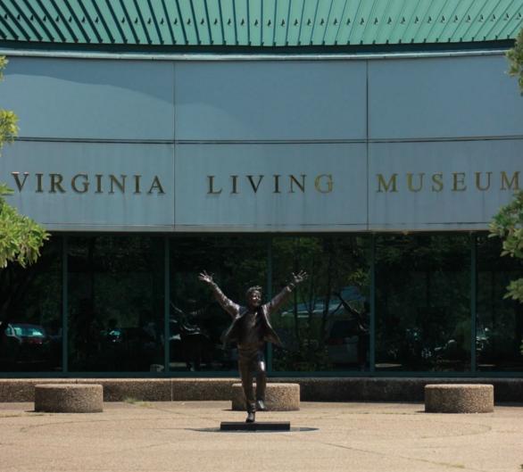 VLM - Top Sustainable Companies in Virginia