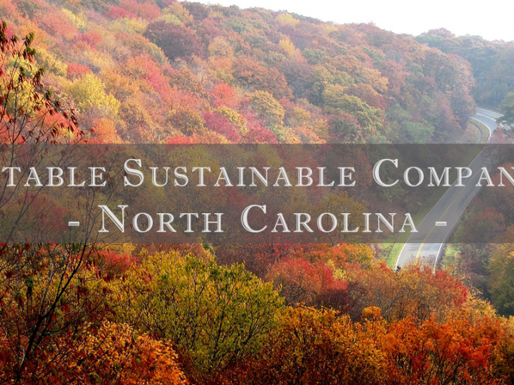 Notable Sustainable Companies in North Carolina